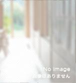 http://ainou.or.jp/main/wp-content/themes/ainou/images/no_image_w152_h166.jpg